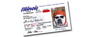 Pet ID & Drivers License