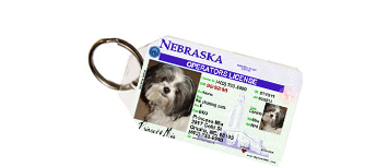Pet License Tag